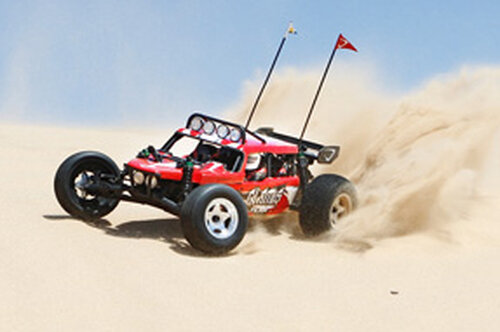 Vaterra Glamis Fear Four Seat Buggy #6