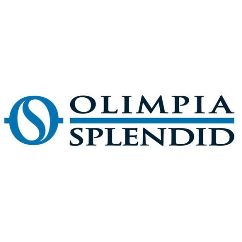 Olimpia Splendid Dolceclima Air Pro 14 HP #2